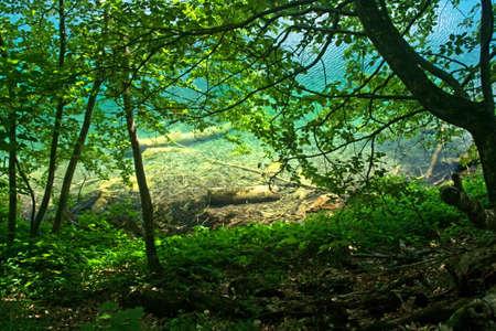 Vista lago Plitvice (Croazia), dalla foresta di luci e ombre