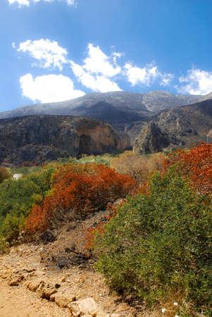 Bellissimo paesaggio in Sicilia santuario Riserva dello Zingaro
