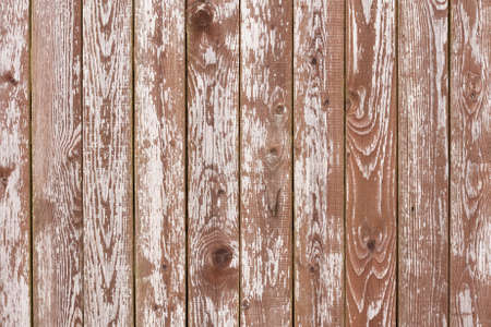 Natural Old White Obsolete Wooden Wall Board Background Texture.