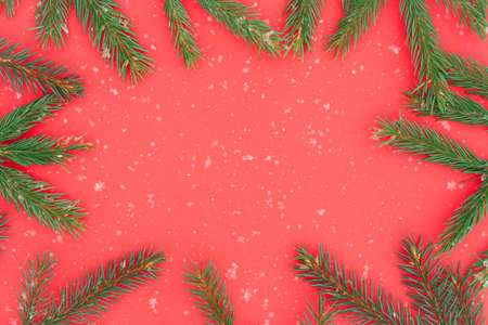 Branches Green Pine On Red Paper With White Snowflakes For Design. Stock fotó