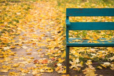 Golden Autumn. Obsolete Wooden Bench Painted In Blue Color With Fallen Yellow Leaves On Bright Colorful Background Of Autumn. Copyspace. Stock fotó