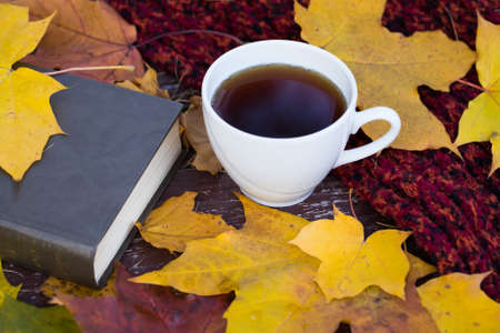 White Ceramic Porcelain Cup C Tea On Old Wooden Table With Book And Knitted Woolen Plaid And Brightly Fallen Maple Leaves. Top View And Close Up. Stock fotó