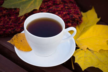 White Ceramic Porcelain Cup C Tea On Old Wooden Table With Knitted Woolen Plaid And Brightly Fallen Maple Leaves Top View.