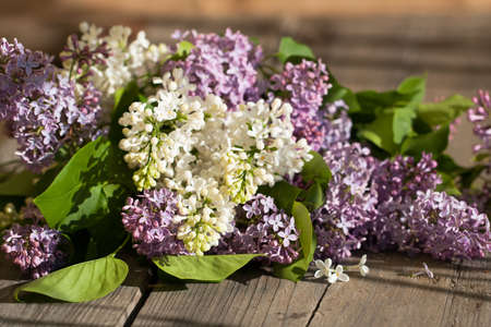 Mai Blumen. Weiße und lila lila Blumen auf Holztisch im sonnigen Frühlingstag hautnah.