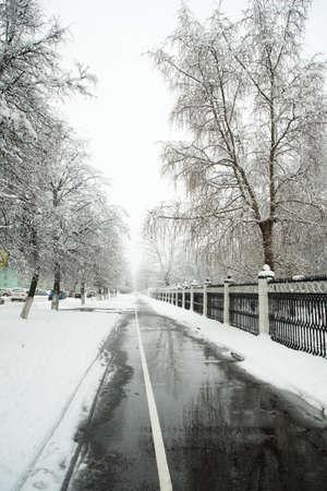 Winter Weather. Wet Pedestrian Asphalt Road Way On Street Near Park In Winter City.