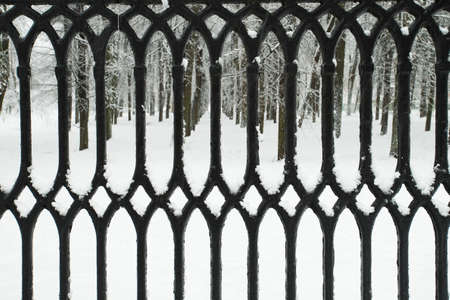 Abstract Textural Background Of Iron Decorative Black Fence With Snow In Winter Park Close Up.