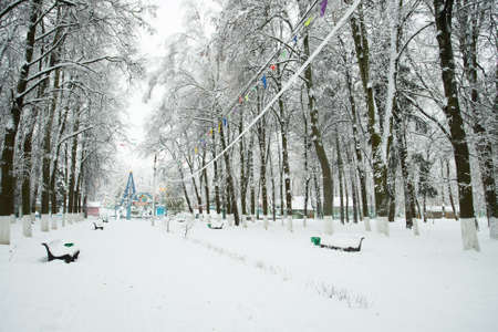 White Snowy Landscape In Winter Park. Park After Heavy Snowfall. Branch Trees Covered Snow. Winter Weather.