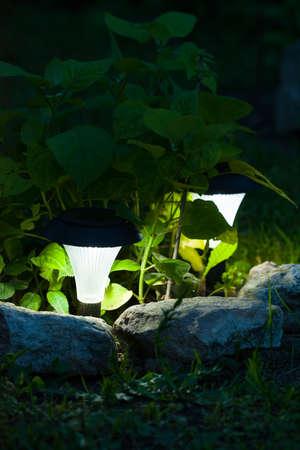 Decorative Solar Lamp Shine Under Decorative Bush Plants In Garden In Dark Time Of Day In Summer.
