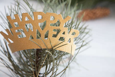 Happy New Year golden crown on a pine branch, in the needles of a Christmas tree. White background