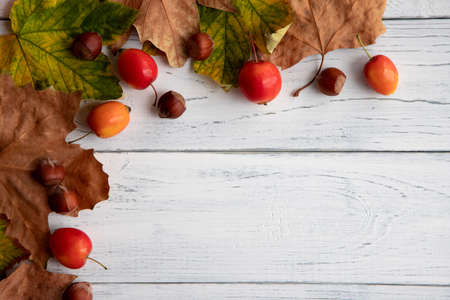 Autumn concept. Maple leaves, nuts and little red apples on an old white wooden table with place for text. Stock Photo
