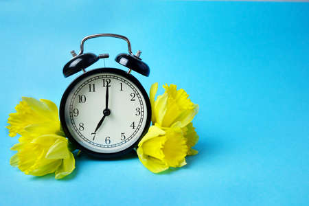 Vintage black alarm clock with blooming yellow daffodils on a blue background. Spring time. Photo for postcards. Copy space.