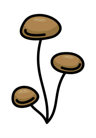 BROWN MUSHROOM ON A WHITE BACKGROUND