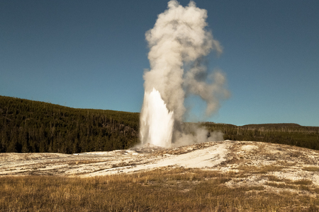 Eruption of Old Faithful geyser at Yellowstone National Park, blue sky background, WY, USA