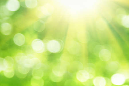 beautiful sunshine: Green blurred background and sunlight. Stock Photo