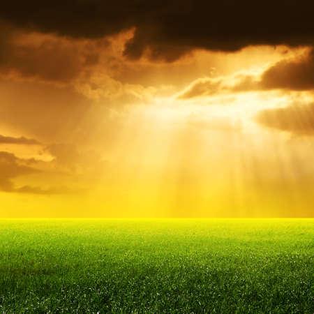 non urban: Sun rays over field.