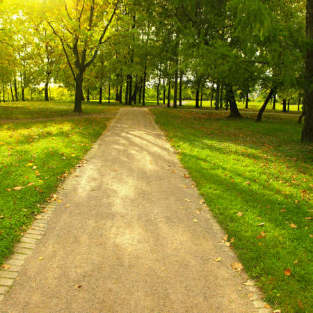non urban scene: Walkway in the park at morning.  Stock Photo