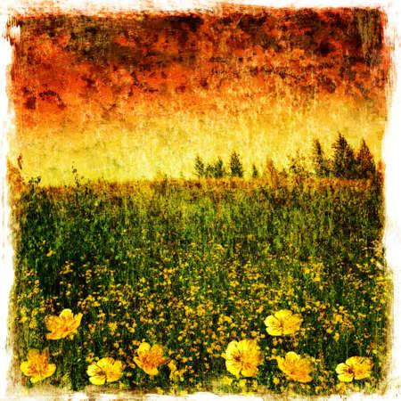 yellow wildflowers: Grunge image of landscape at sunset. Stock Photo