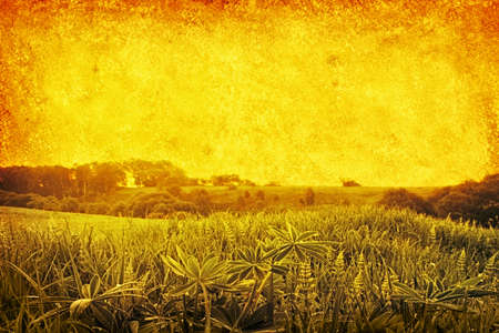 Green field in retro and grunge style.  photo