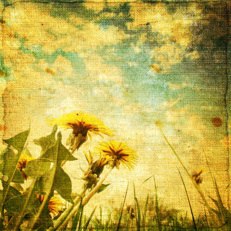 old fashioned sepia: Retro image of dandelion field at sunset