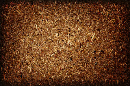 sawdust: Grungy wooden background  Stock Photo