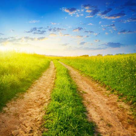 Weg op groene weide bij zonsondergang