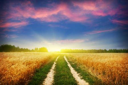 Landstraße und schönen Sonnenuntergang Standard-Bild