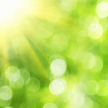 Green forest bokeh background with sun rays