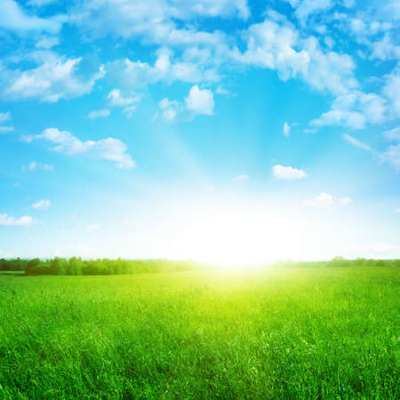 Sunshine in blue sky and green field