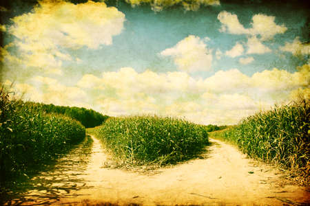 2 way: Two paths in the corn field in grunge and retro style