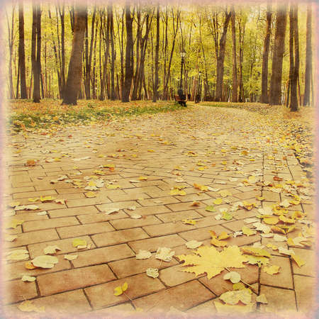 Old style photo of walkway in autumn park. photo