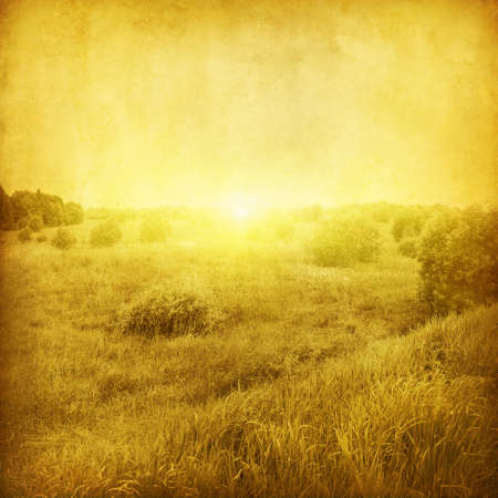 non cultivated: Summer landscape at sunset in grunge and retro style