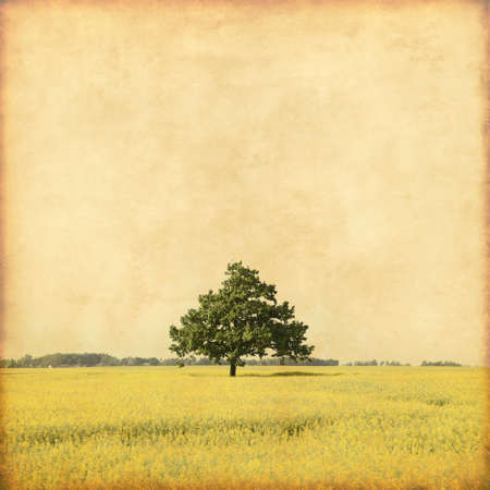 grunge tree: Summer landscape with lonely tree in grunge and retro style.