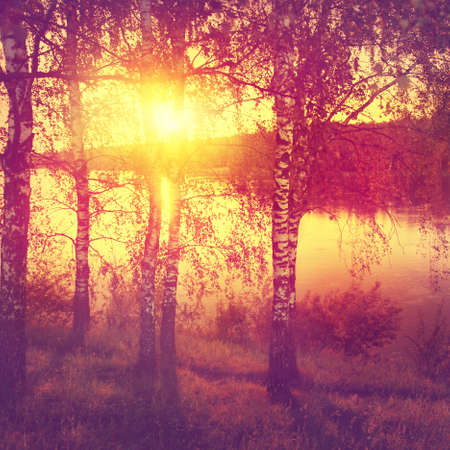 vintage landscape: Sunset landscape in vintage style. Stock Photo