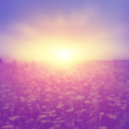 Abstract blurred image of summer field at sunset in vintage style.