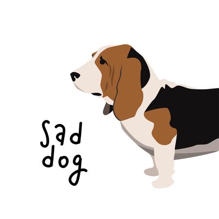 Sad dog vector illustration. Basset hound simple template for graphic design. Illustration