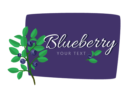 Blueberry template for food packaging. Vector set of product labels.