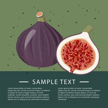 Fig fruits background with text area. Fresh fruits recipe template.