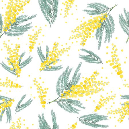 Seamless spring pattern with mimosa flower. Bright yellow flowers background. Illustration