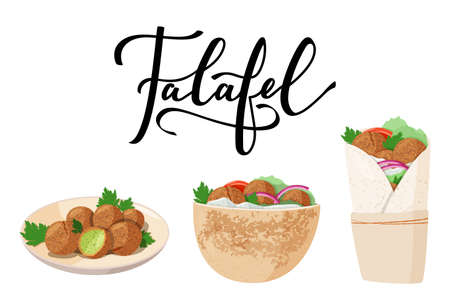 Traditional dish of Jewish cuisine Falafel. Pita sandwich, falafel on the plate and wrap, roll. Vegetarian food with tahini pasta. Stock Illustratie