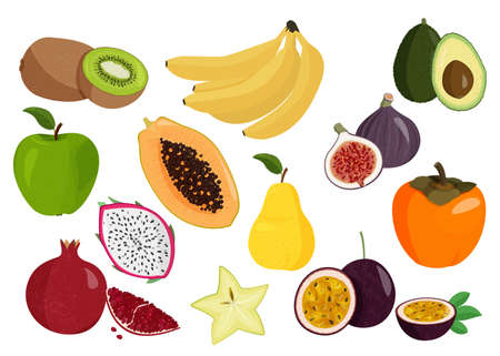 Realistic vector illustrations. Fresh fruits collection. Set of sweet fruits.