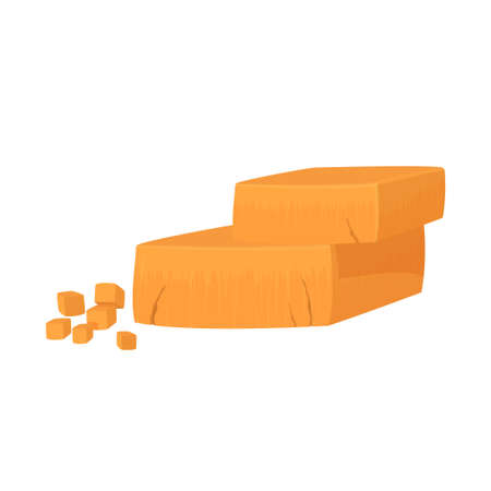 Pieces of Cheddar cheese. Realistic vector illustration isolated on white background. 矢量图像