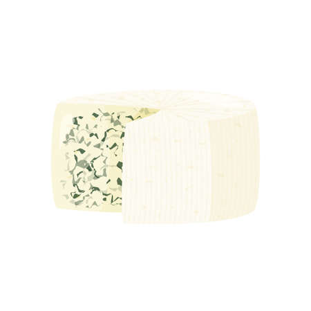 Blue cheese isolated on white background. Roquefort cheese vector illustration. 矢量图像