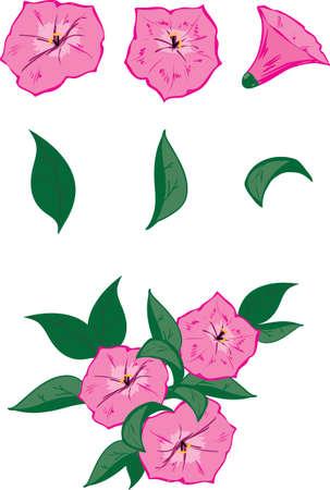 スケッチ アップ用のベクトル オブジェクトを所有して生け花、ペチュニアと葉っぱ 3 の 3 のピンクの花とも可能な構成の例