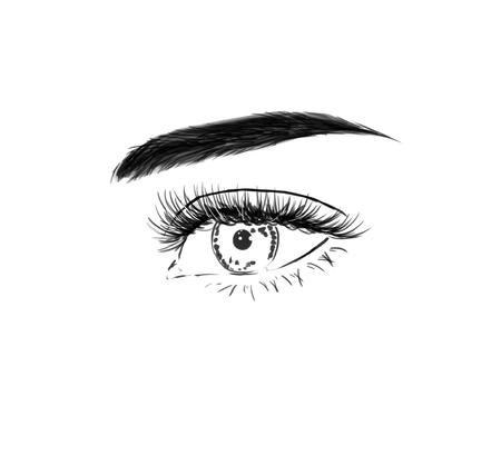 Close up with beautiful eyes with long eyelashes. Fashion black and white  illustration, hand drawing Imagens