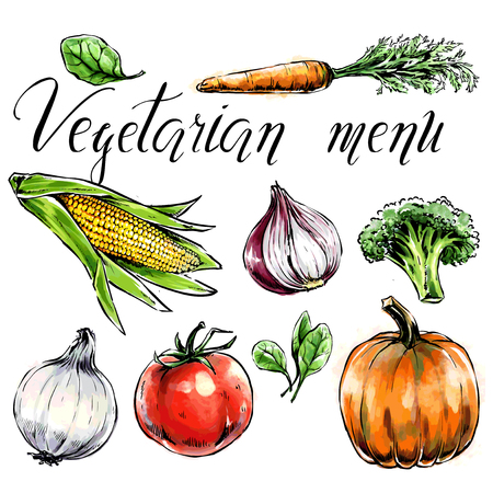 Set of vegetables:c Healthy food for health care and vegetarian menu. Freehand watercolor spinach,carrot,corn,tomato,pumpkin,broccoli. Vector illustration. Black contour, isolated object Иллюстрация