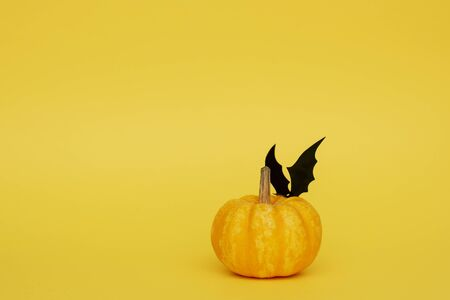Pumpkin on yellow background with black bat on top