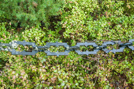 Chain at old beautiful semetery in Finland