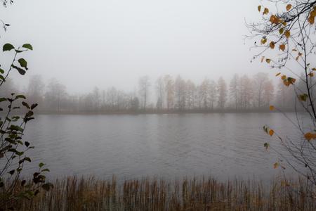 Autumn landscape of Kymijoki river waters in fog. Finland, Kymenlaakso, Kouvola 版權商用圖片
