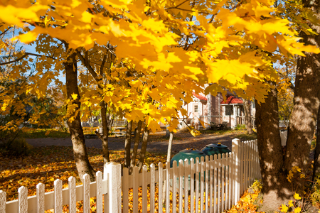 Beautiful colorful autumn scene with white fence and fall colors in Finland