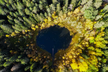 Aerial view of small forest lake Haransilma in Lahti, Finland. The diameter of lake is about 50 meters.